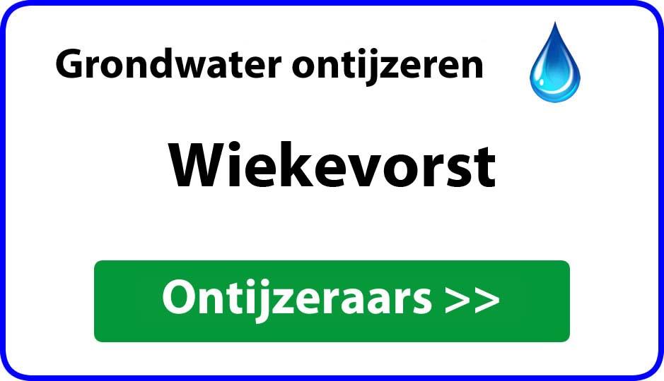 Ontijzeraar ijzer in grondwater Wiekevorst